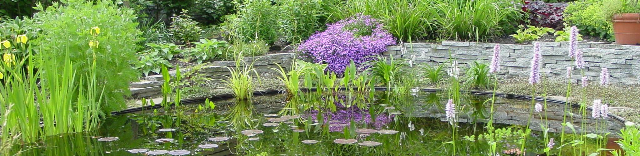 Natuurlijke tuin ontwerp de hofhouding zaltbommel for Tuinontwerp natuurlijke tuin