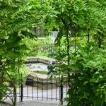 Landelijke tuin tuinontwerp dijkwoning Rossum