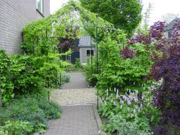 Rondom de woning tuin