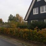 Tuin omgeven door weilanden (1)