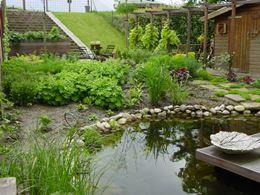 Dijktuin met vijver