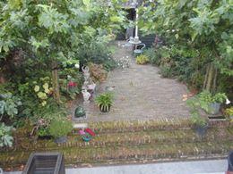 Tuin met niveauverschil en platanen