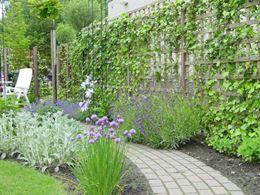 Tuin met vijver, pergola en slingerpaadjes